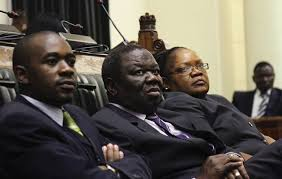 Zimbabwe president announces referendum date