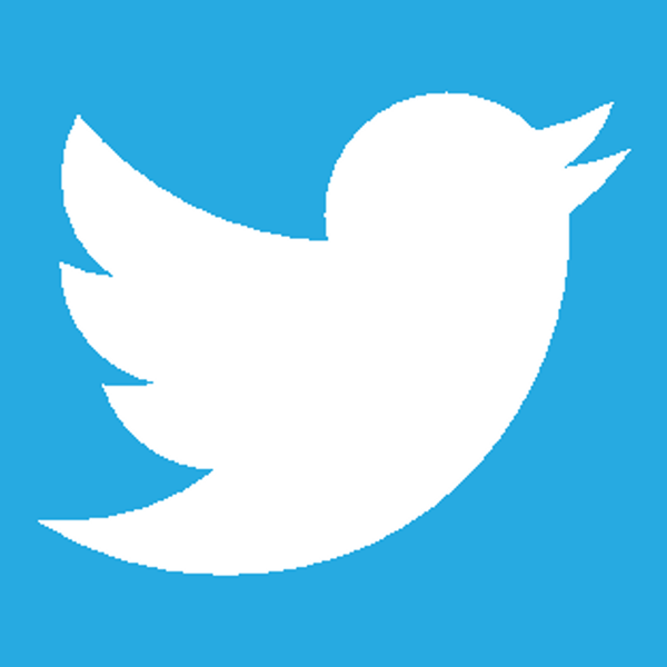 White Twitter Bird Logo Pictures to Pin on Pinterest ...
