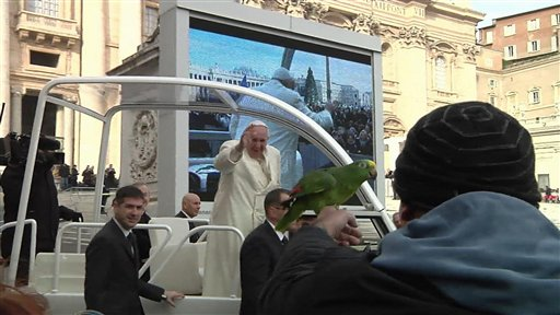 After Dove Disaster, Pope Francis Takes a Parrot