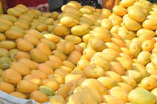FDA: Organic Mangoes Recalled, Possibly Tainted With Listeria