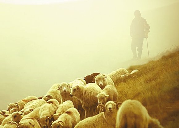 The Lord is Our Protector, Shelter and Shepherd