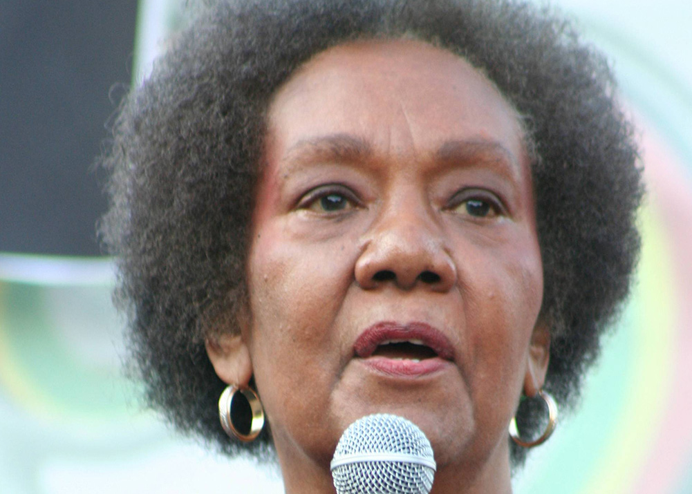 Famed Psychiatrist Isis Papers Author Frances Cress