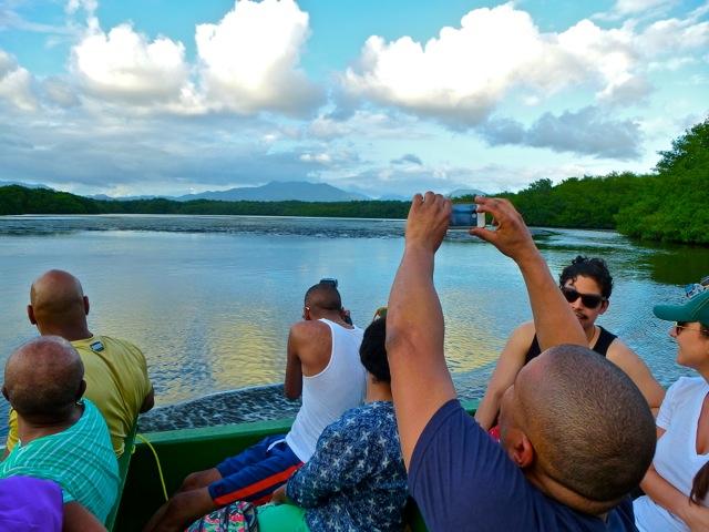 Bird Watching Tour at the Caroni Bird Sanctuary/Wetlands in Trinidad