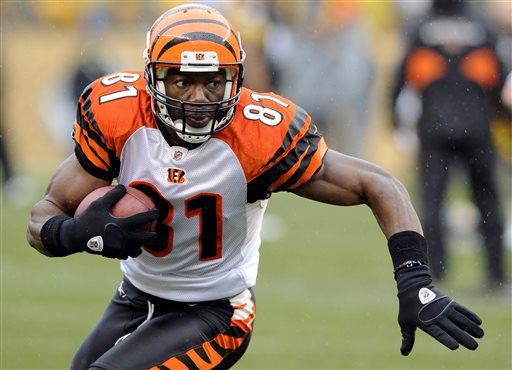 In this Sunday, Dec. 12, 2010 file photo, Cincinnati Bengals wide receiver Terrell Owens (81) warms up during pre game of an NFL football game against the Pittsburgh Steelers in Pittsburgh. Owens has been nominated for the Pro Football Hall of Fame class of 2016, Wednesday, Sept. 16, 2015. (AP Photo/Don Wright, File)
