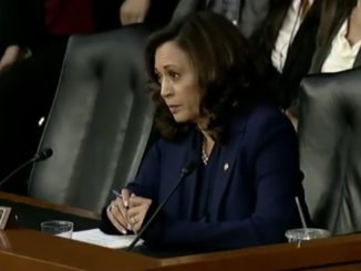 Sen. Kamala Harris questions Supreme Court Nominee Brett Kavanaugh (screen capture / YouTube)