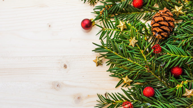 By Sentinel News Service - City Of Los Angeles Launches 2018 Christmas Tree Recycling Program