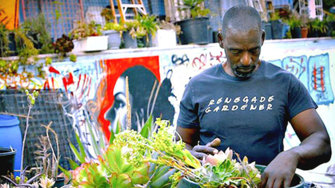 More Blacks are making gardening their major emphasis. (Courtesy photo