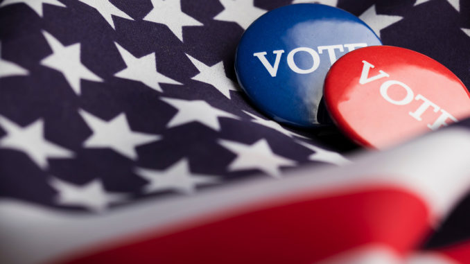 As the 116th Congress begins to tackle its agenda this term, voting rights is a key issue. (Photo: iStockphoto / NNPA)