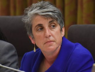 D.C. Council member Elissa Silverman (Jahi Chikwendiu/The Washington Post)
