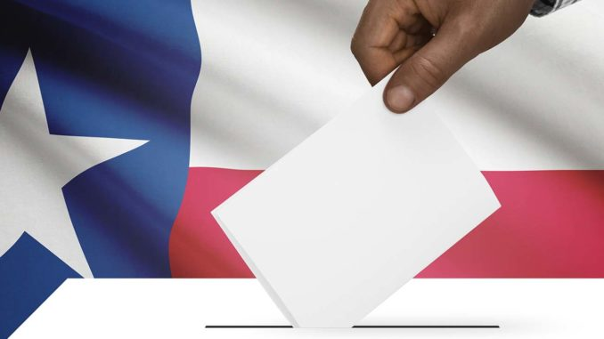 """This exercise is a thinly veiled attempt to advance the voter fraud myth to justify restrictive voter requirements and suppress voting rights,"" said Sophia Lakin, staff attorney with the ACLU's Voting Rights Project. (Photo: iStockphoto / NNPA)"