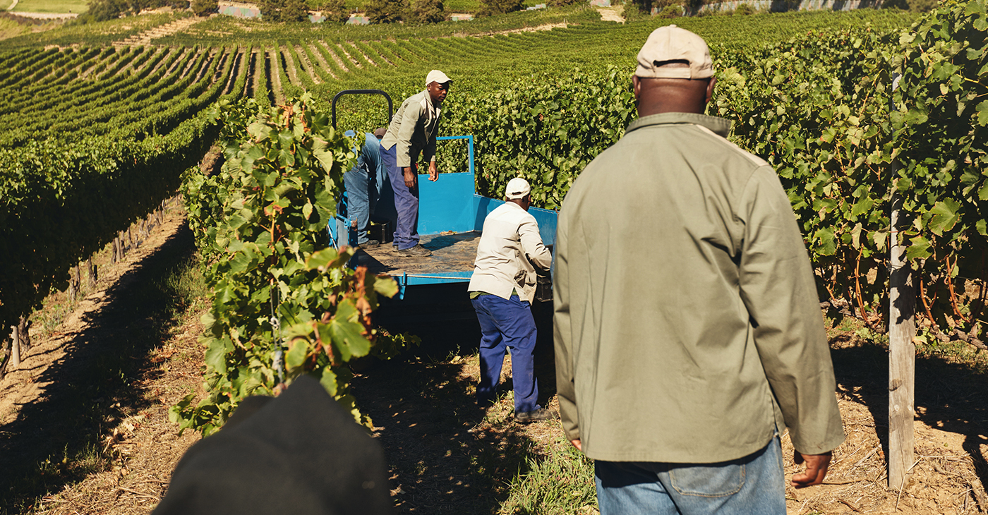 The BFAA's fight for nearly a decade has been to have the money already set aside to pay the additional class-action claims be actually paid to farmers and their heirs. Some have passed away over the past decade, waiting for redress. (Photo: iStockphoto / NNPA)